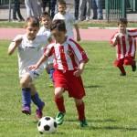Torneo maggio 2015 (13)