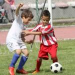 Torneo maggio 2015 (7)