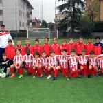 2010-Pulcini